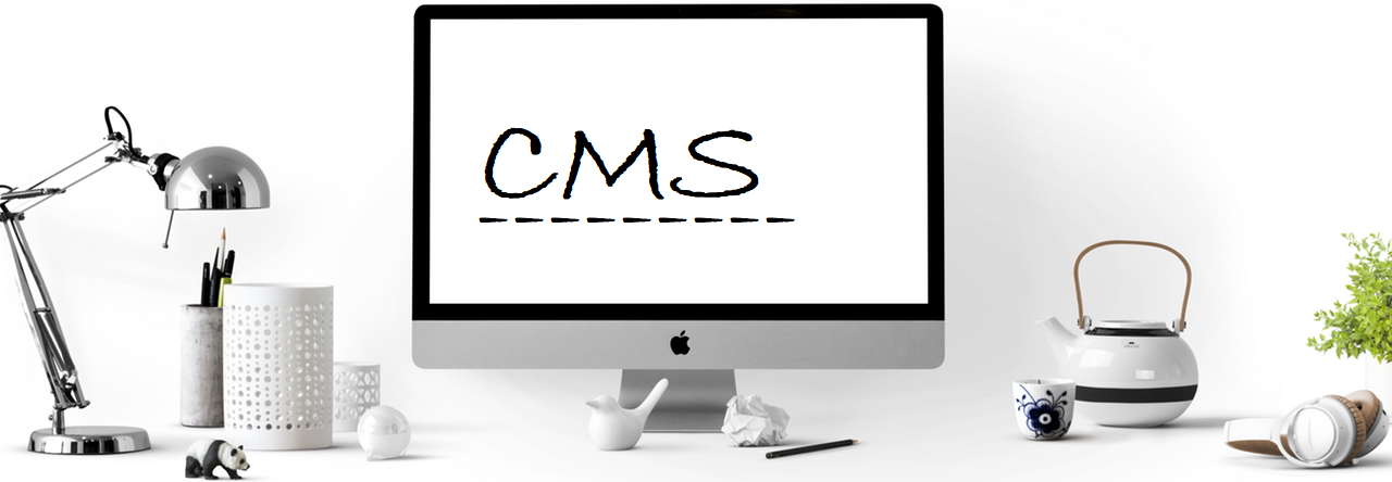 Which CMS should i choose